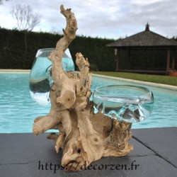 1 vase et un terrarium en verre recyclé soufflé en fusion directement sur du bois flotté, les verres sont amovibles