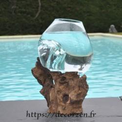 Merveilleux petit bol à cocktail ou petit aquarium en verre soufflé sur du bois flotté VS202.311