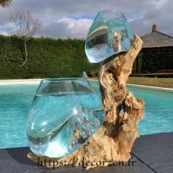 2 aquariums en verre recyclé soufflé en fusion directement sur du bois flotté, les verres sont amovibles pour le lavage