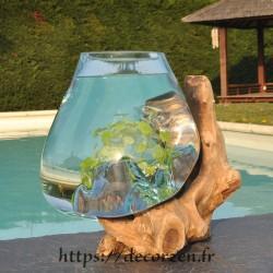 Aquarium ou énorme bol à...