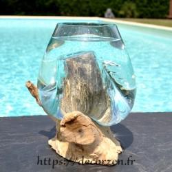 Vase ou terrarium en verre recyclé soufflé en fusion sur du bois flotté, le vase est amovible pour le laver