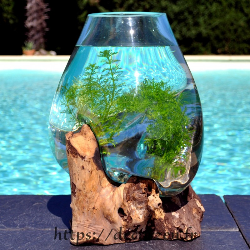 Aquarium ou bol à punch en verre recyclé fondu puis soufflé en fusion sur une racine