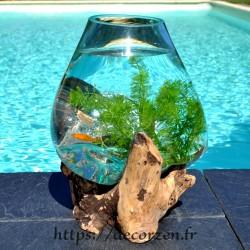 Aquarium ou bol à punch en verre recyclé soufflé et moulé sur du bois, le verre est amovible pour un lavage aisé.