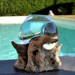 Petit aquarium ou  vase en verre recyclé soufflé en fusion sur du bois flotté, le vase est amovible