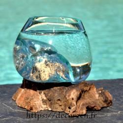 Petit aquarium ou  vase en verre recyclé soufflé moulé à la bouche en fusion sur du bois flotté, le vase est amovible