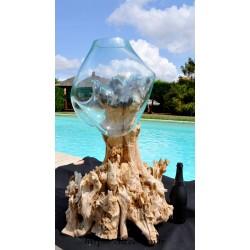 Aquarium 1m en verre souffle sur une racine