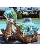 La collection King Size